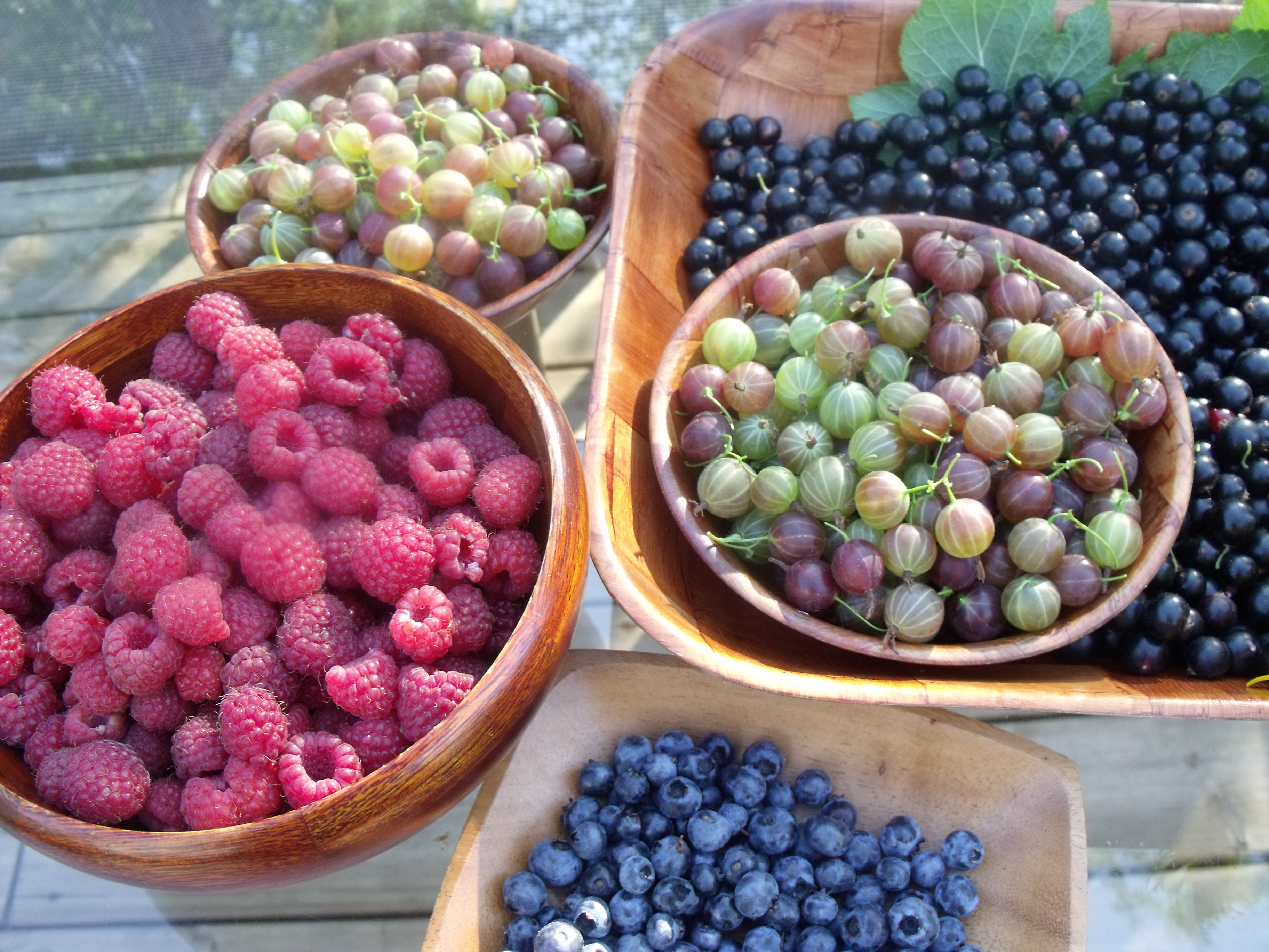 raw vegan jumbleberry pie u2013 antioxidant buzz